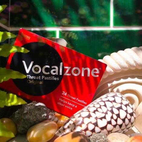 VOCALS ZONE